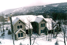 Pocono Ski Homes for Sale